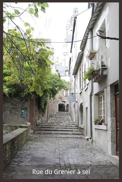 La Maison d'Ines- Gîtes à Blois-Loir-et-Cher